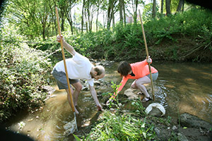 Watershed UGA to teach about campus stream health